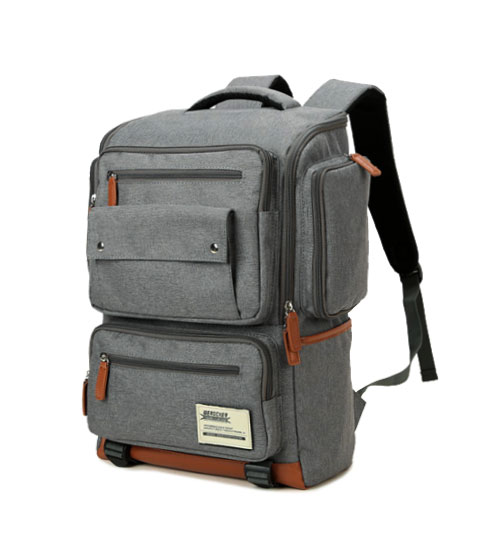 The Dingo Casual Korean Laptop Backpack