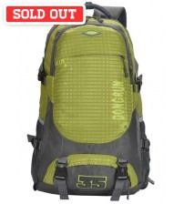 Flare Travel Outdoor Backpack Green